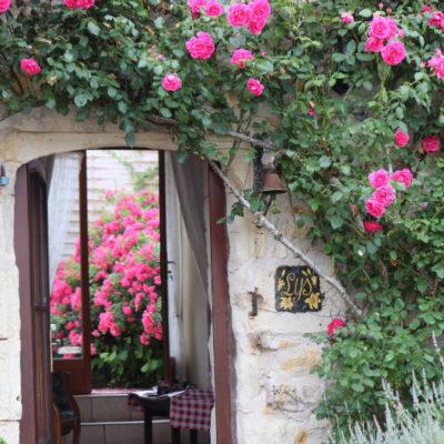 Gite les Roses à doue-la-Fontaine en Anjou